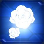 Simple Rose White 150x150