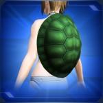 亀の甲羅 Tortoise Shell