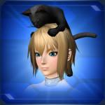 頭乗りクロネコ Head Riding Black Cat